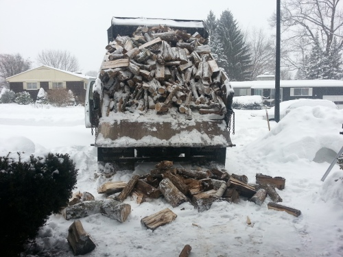 Heating with wood involves a lot of slave labor from our kids.  This load of wood arrived snowy, which made our garage wet.  We had to dry each log in the house for three days before it was ready to burn.  Winter is the most expensive time of year to buy cord wood.